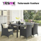 Modern Leisure Patio Rattan/Wicker Garden Outdoor Furniture Rattan Chair